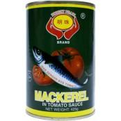 MACKEREL - JACK