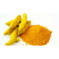 TURMERIC POWDER - SARTAJ